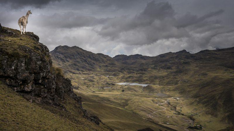 Lares Valley, Peru